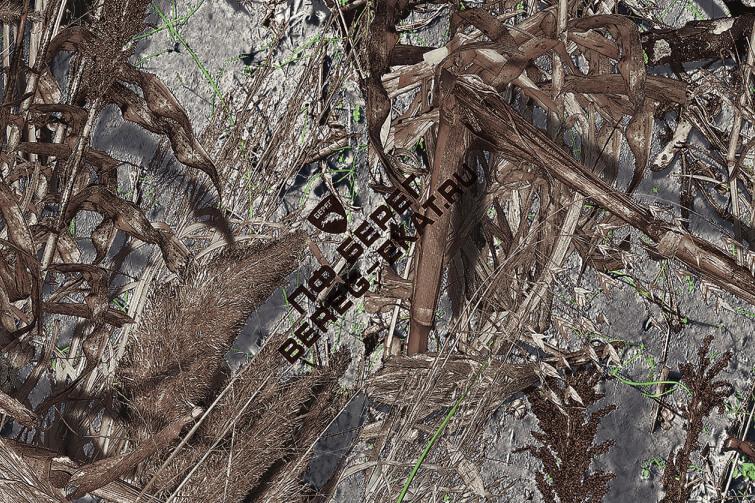 логотип на ткани берег